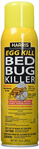 Best Bed Bug Spray Products Review