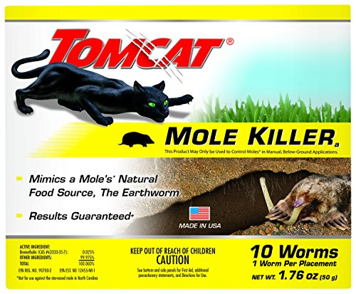 Easy & Effective Ground Mole Traps Review