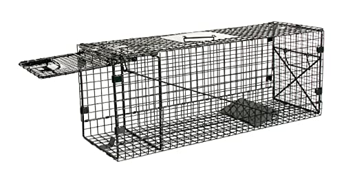 Best Skunk Traps That Works Effectively