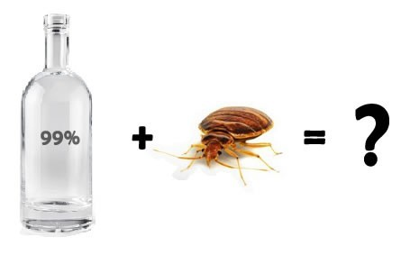 Does Rubbing Alcohol Repel Bed Bugs?