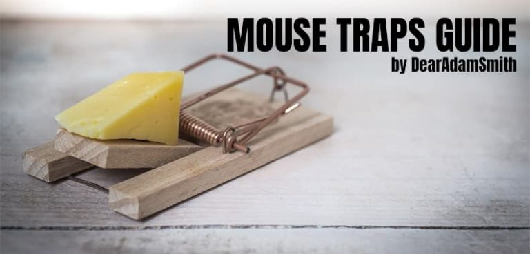 Best Electronic Mouse Repellent